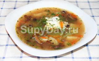 Рецепт Суп из опят с гречкой: как приготовить, фото