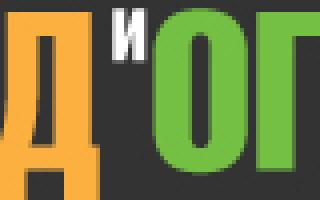 Шандра обыкновенная: описание сорта с фото, отзывы, посадка и уход