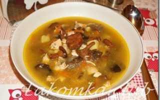 Рецепт Куриный суп с лисичками и перловкой: как приготовить, фото