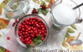 Рецепт Брусничный морс: как приготовить, фото