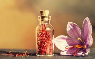 Солорина шафранная: описание с фото, где растет, свойства